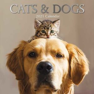 Cats and Dogs Kalender 2021