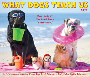 What Dogs Teach Us Kalender 2022 Boxed
